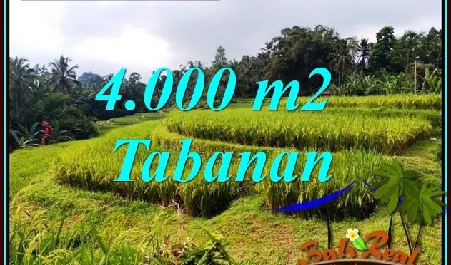JUAL TANAH MURAH di TABANAN 40 Are VIEW SAWAH DAN SUNGAI
