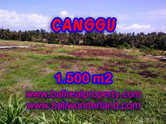 Tanah dijual di Canggu 1,500 m2 di Tumbak Bayuh