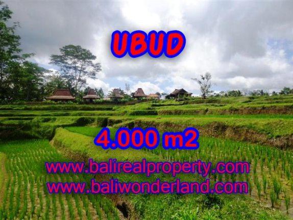 Jual tanah di Ubud Bali 4.000 m2 view sawah dan sungai di Dekat sentral Ubud