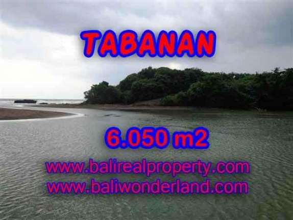 INVESTASI PROPERTI DI BALI - JUAL MURAH TANAH DI TABANAN BALI TJTB098