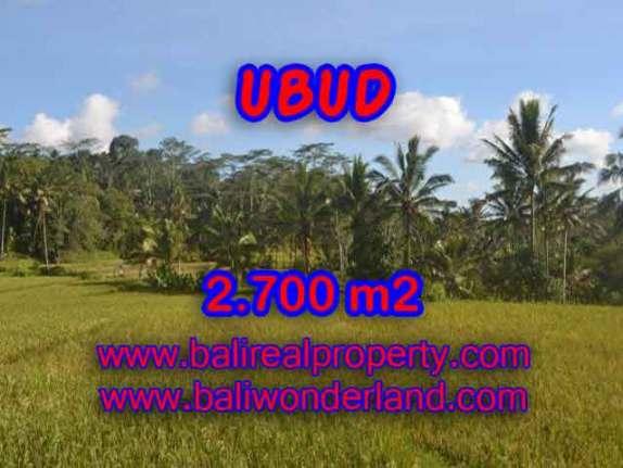 Murah ! Tanah di UBUD Bali Dijual TJUB414