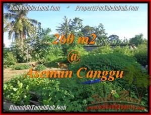 TANAH MURAH di CANGGU JUAL 2,6 Are View sawah link villa