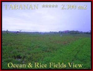JUAL TANAH di TABANAN BALI 2.300 m2  View laut, sawah dan gunung