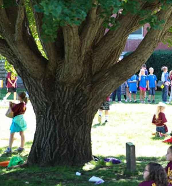 Plum Creek Children's Literary Festival