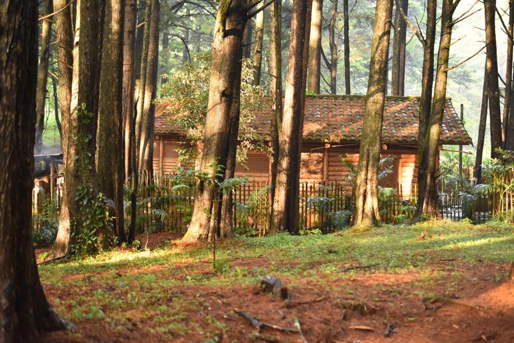 Cabaña en el Parque Nacional Montecristo