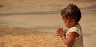 8 hábitos de la gratitud