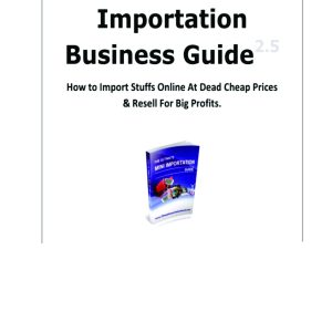 The Online Mini Importation Business Guide
