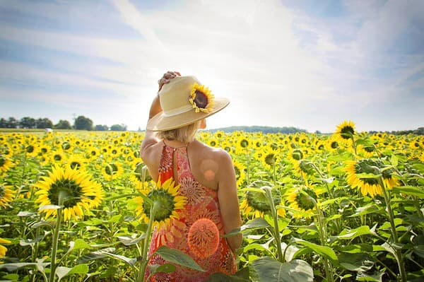 vitamins to take after age 50+sunflowers