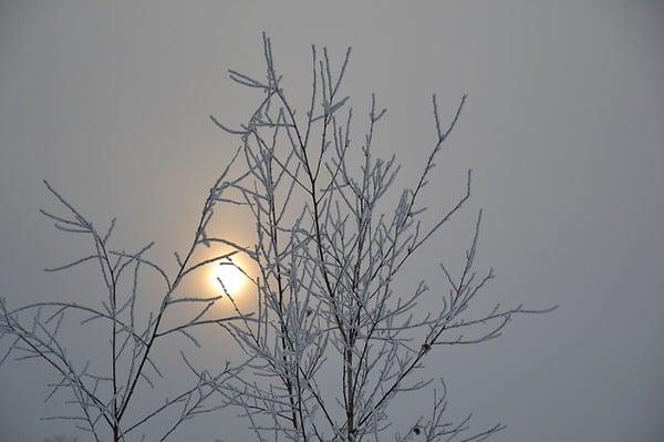 SAD and menopause+grey-sky-bare-trees
