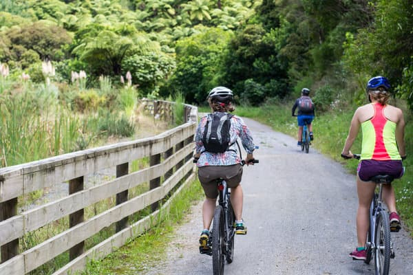 simple steps to prevent falls+cycling-exercise