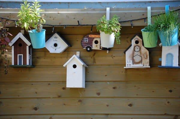 tiny house communities+birdhouses