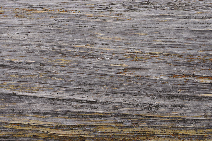 Free High Resolution Texture Download: Grunge Wood Grain