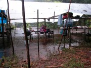 The long term base camp at Potaro floods, Mycologists are unperturbed. Guyana, June 2010