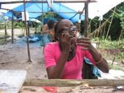Guyanese native Dillon Husbands identifies new species of ECM boletes at the Potaro study site, Region 8, Guyana, May 2010