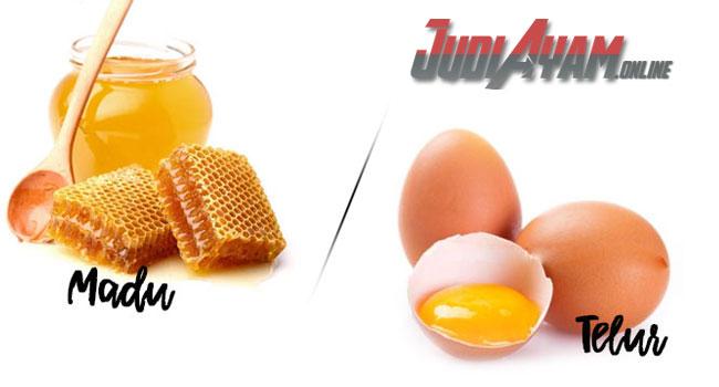 Manfaat Telur Dan Madu Untuk Ayam Bangkok Aduan