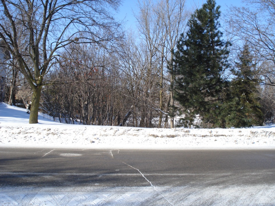 2009-january-0091