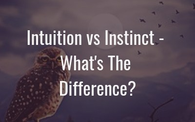 Intuition vs Instinct – Whats the difference