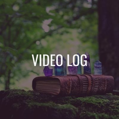 video log