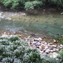 Rio Claro (clear river) and some parts walkable