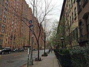 Meet the Highline, Manhattan, NYC. - judimeetsworld