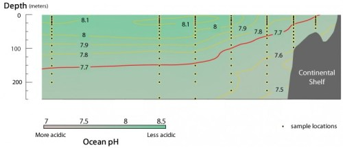 rud 4 pH-transect-5_0