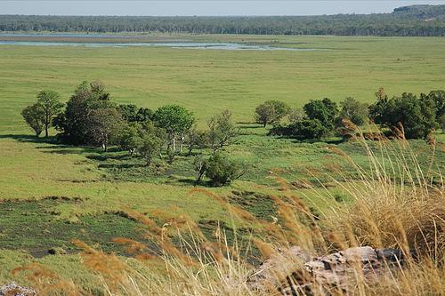 Arnhemland from Ubiru