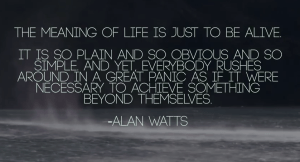 The meaning of life is to live