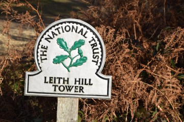 leith-hill-dorking-03-dec-2016-13