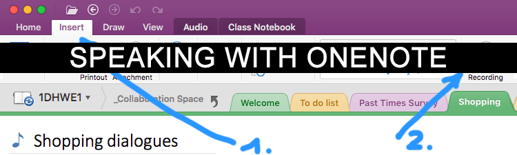OneNote for Speaking