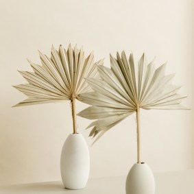 Still Life Of Dried Palm Leaf In Vase In Front Of Light Tan Background