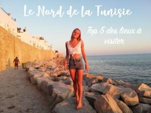 Read more about the article Top 5 des lieux à visiter dans le Nord de la Tunisie