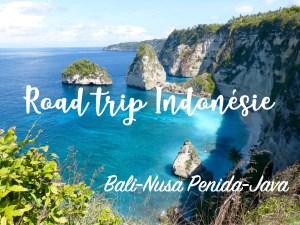 Road trip : Indonésie (Bali-Nusa Penida-Java)