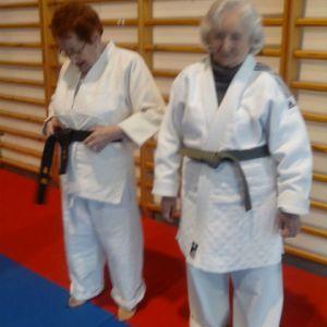 Judo Utilitario Adaptado 5