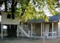 Back patio & treehouse