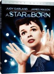 2010-Standard-DVD
