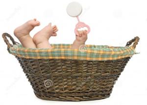 baby-basket-4618965
