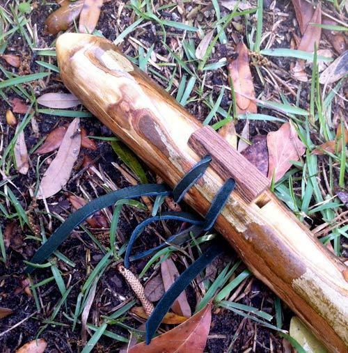 Crepe Myrtle Wood Hardness