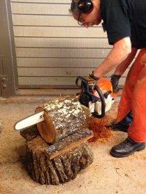 bob-sawing-log-w