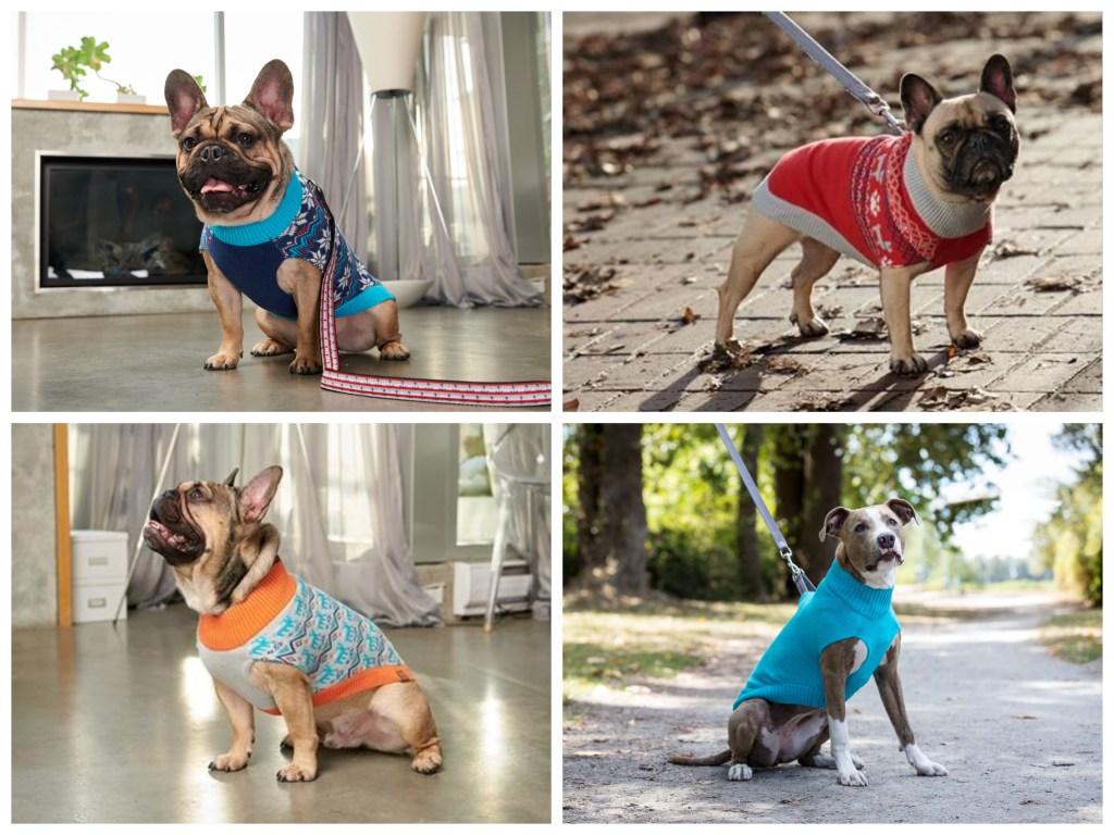 ff2777fdebf9 También tenemos los suéteres con detalles navideños para tu perro