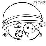 Cerdo con casco enfadado