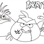 Chuck, Red y Blue Bird muy enojados