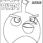 Pájaro Negro despistado