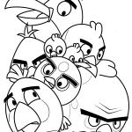Todos los Pájaros de pequeños