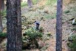 Aquí vemos un gnomo en el bosque¡¡ jajaja