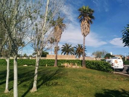 JugendstilBikes Mallorca 2015 - Ankunft