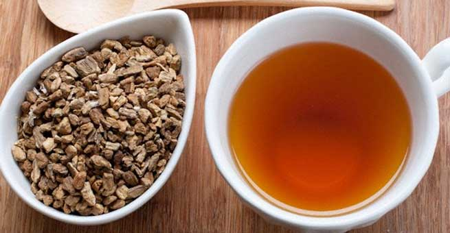 The Benefits of Burdock Tea