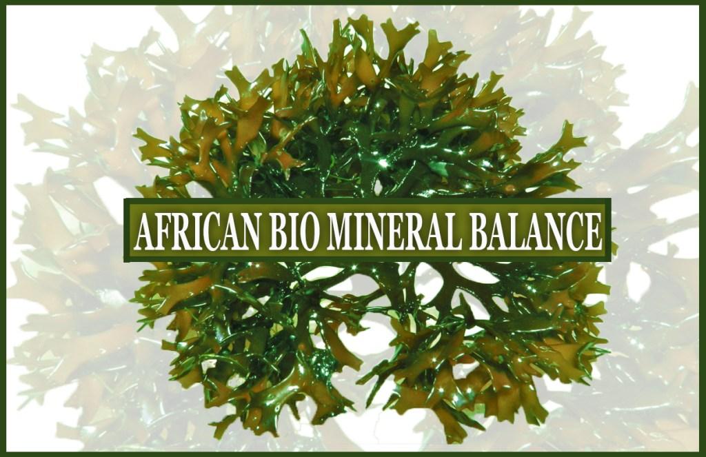 AFRICAN BIO MINERAL BALANCE LOGO3
