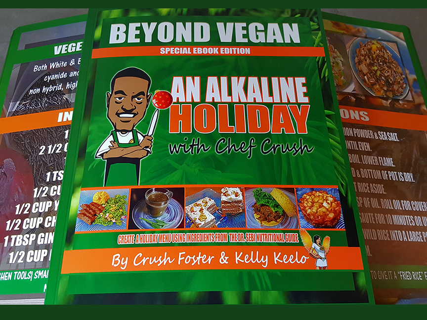 an-alkaline-holiday-website-graphic
