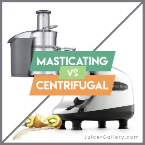 What Is Masticating Juicer? Masticating vs Centrifugal Juicer 2