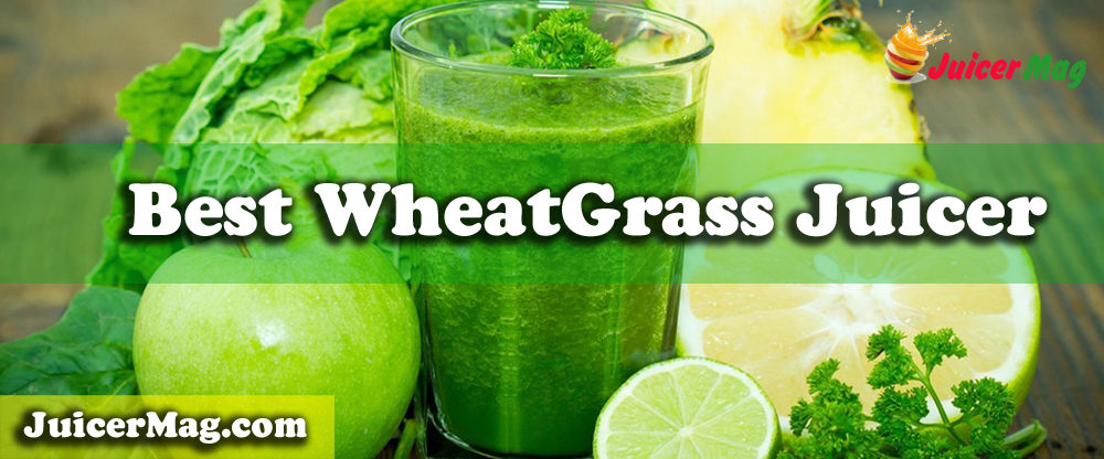 Top 05 Best Wheatgrass Juicer – Ultimate Buyer Guide